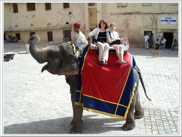 Elephant Ride jaipur