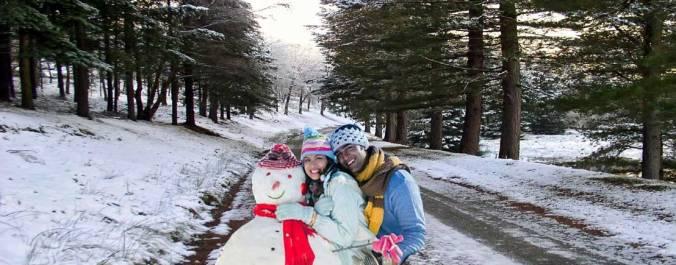 Shimla Manli