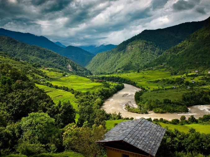 Punakha vailly