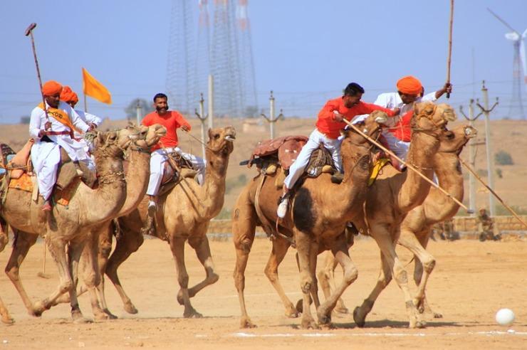 Revel in Desert Festival